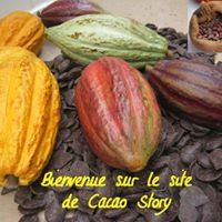 Cacao-Story