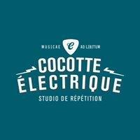 La cocotte électrique
