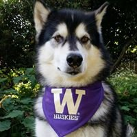 University of Washington Tacoma Office of Student Financial Aid