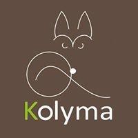 Kolyma Chiens de traineau