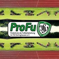 ProFu-TSV :: Förderkreis der Fußballabteilung im TSV Oerlinghausen e.V.