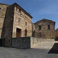 Museo Avacelli