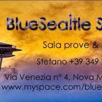 BlueSeattle Studio - sale prove & More -