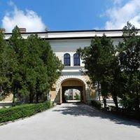 Centrul De Cultura Si Arta Al Judetului Salaj