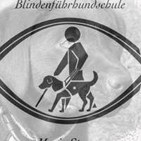 Blindenführhundschule Mario Stranz