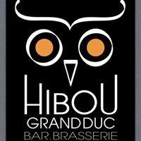 Hibou grand duc