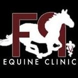 F9 Equine Clinic