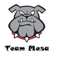 Team Mesa Bulldogs