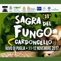 SAGRA DEL FUNGO CARDONCELLO Pro Loco Ruvo di Puglia