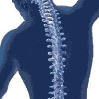 Chiropractie Den Haag