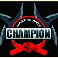Champion Martial Arts U.S.A