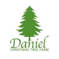 Daniel Christmas Tree Farm