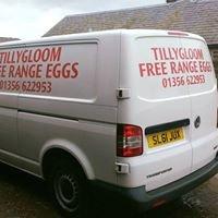 Tillygloom Farm