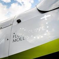 Fluggruppe Mollis