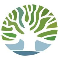 Lifetree Health