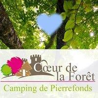 Le Cœur de la Forêt