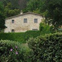 Agriturismo Paradiso di Cerreto, Siena, Tuscany