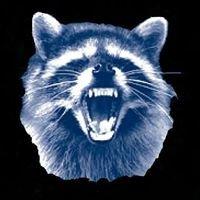 Raccoon Mountain Road Race