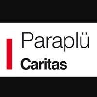 Integrationszentrum Paraplü