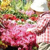 Prairiale - la Fête des Fleurs et des Jardins