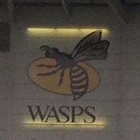 Wasp Arena