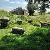 Necropoli etrusca Tarquinia