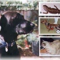Wildwood Veterinary Hospital