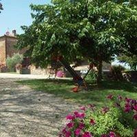 Agriturismo Podere Il Moro - Siena Toscana