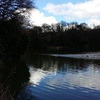 Leasowes Park