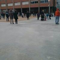 Escola Del Bosc