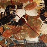 Kirkwall bay shellfish