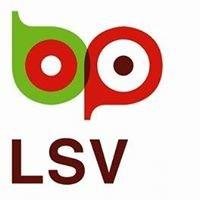 Leeuwarder Schoolvereniging (LSV)