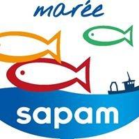 Sapam Marée