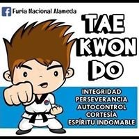 Tae Kwon Do Sport Clinic