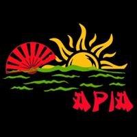 Asian Pacific Islander Association at Gallaudet University
