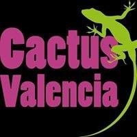 Cactus valencia