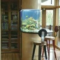 Mark's Marine Aquarium