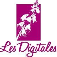 Centre culturel Les Digitales - Caden 56