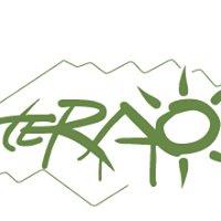 Terao