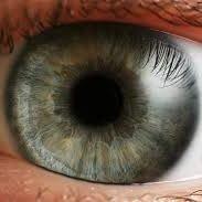 استشارات مجانية في طب وجراحة العين