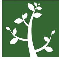 Hoffman Genealogy Talks
