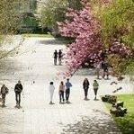 Département de Lettres modernes de l'Université de Rouen