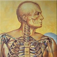Orthopaedic Physicians & Surgeons PC