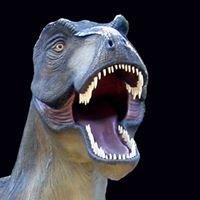 Boutique en ligne du musée parc des dinosaures de Mèze.