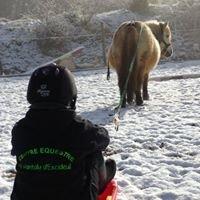 Poney Club St Pantaly/ Equitation à Domicile