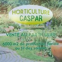 Horticulture Caspar