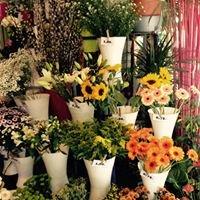 Bloemen Vervoort Lier