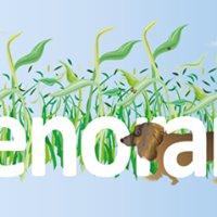 Kleenorama Janitorial and Sanitation Goods LLC