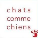 Chats Comme Chiens