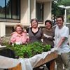 Countway Community Garden